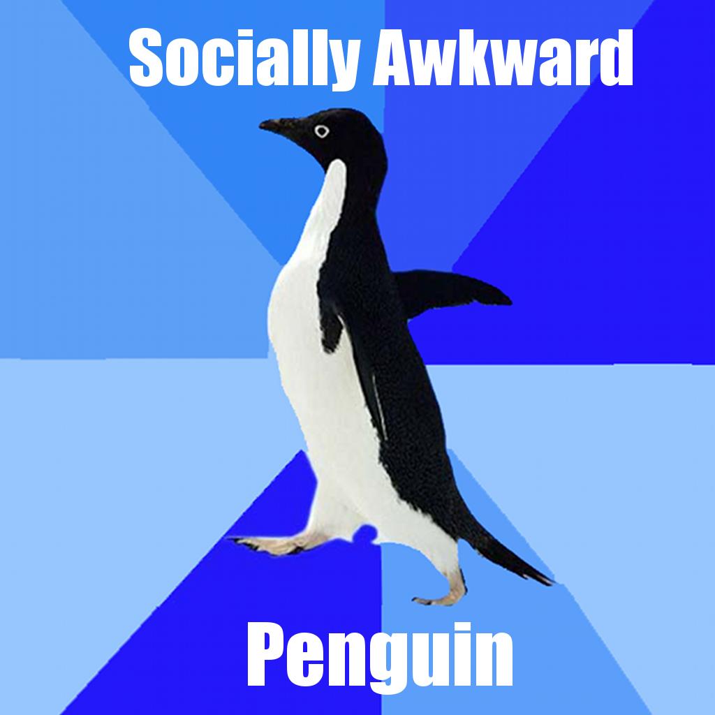 Socially awkward awesome penguin meme like
